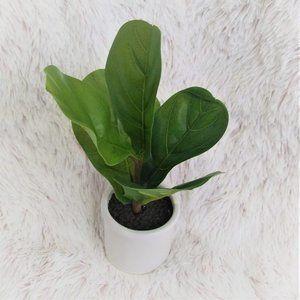 Artificial Fiddle-Leaf Fig In Ceramic Pot White